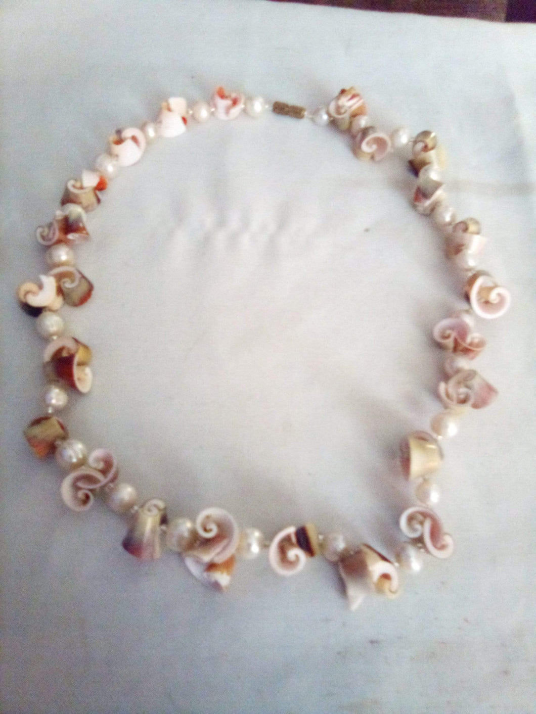 Handmade shell necklace with pearl like dividers - B&P'sringsnthings