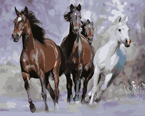 Animal Horse Diy Paint By Numbers Kits Uk ZXB826