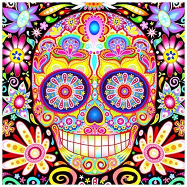 Skull Diy Paint By Numbers Kits Uk VM90029