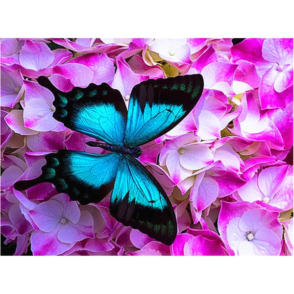 Flower Butterfly Diy Paint By Numbers Uk VM90314