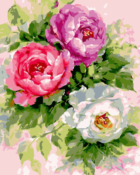 Peony Diy Paint By Numbers Kits Uk SY-4050-067