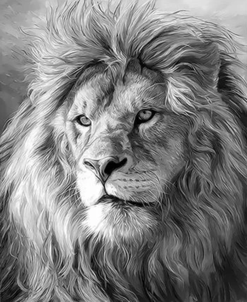Animal Lion Diy Paint By Numbers Kits Uk ZXQ3288
