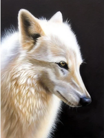 Animal Wolf Diy Paint By Numbers Kits Uk VM91754