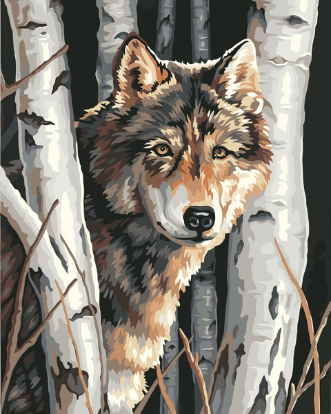 Wolf Diy Paint By Numbers Kits Uk WM-003