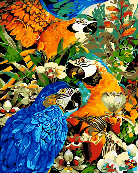 Parrot Diy Paint By Numbers Kits Uk WM-1309