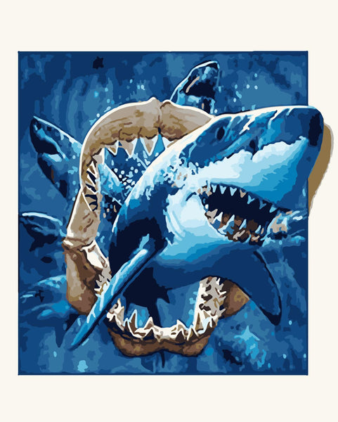 Shark Diy Paint By Numbers Kits UK WM-485