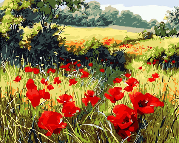 Poppy Flower Diy Paint By Numbers Kits UK WM-570 ZXQ919
