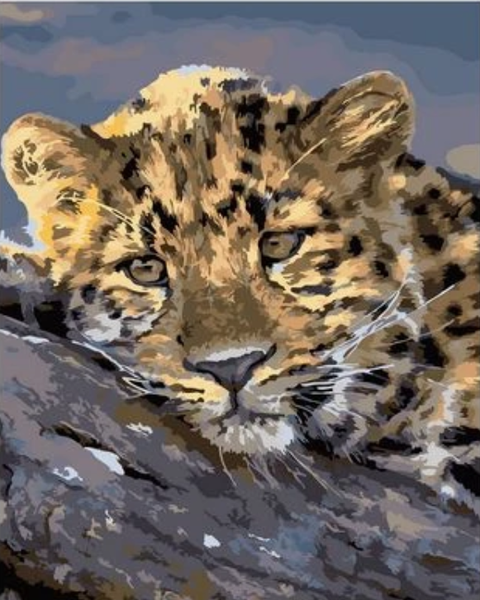 Animal Leopard Diy Paint By Numbers Kits Uk ZXQ2029