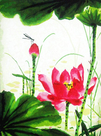 Lotus Diy Paint By Numbers Kits Uk YM-4050-020