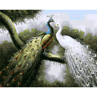 Peacock Diy Paint By Numbers Kits UK PBN30016