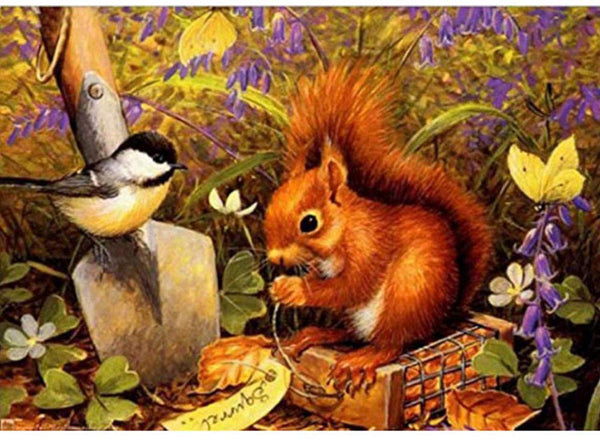 Squirrel Diy Paint by Numbers Kits UK DIY VM30102