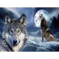 Animal Wolf Diy Paint By Numbers Kits Uk VM91753