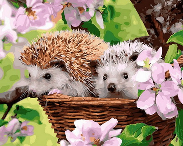 Hedgehog Diy Paint By Numbers Kits Uk VM30136