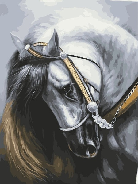 Horse Diy Paint By Numbers Kits Uk VM92633