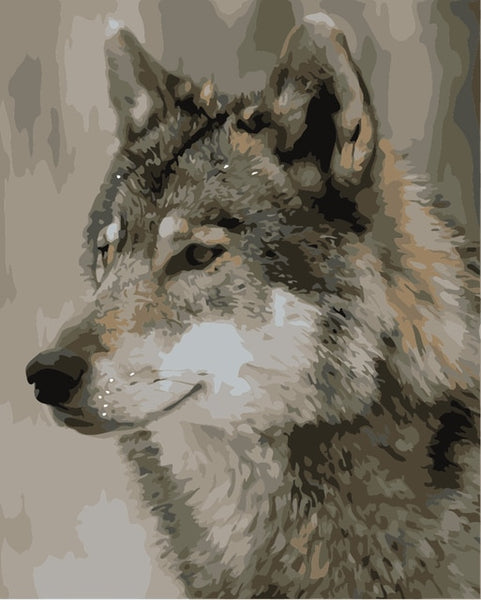 Animal Wolf Paint By Numbers Kits Uk VM90740