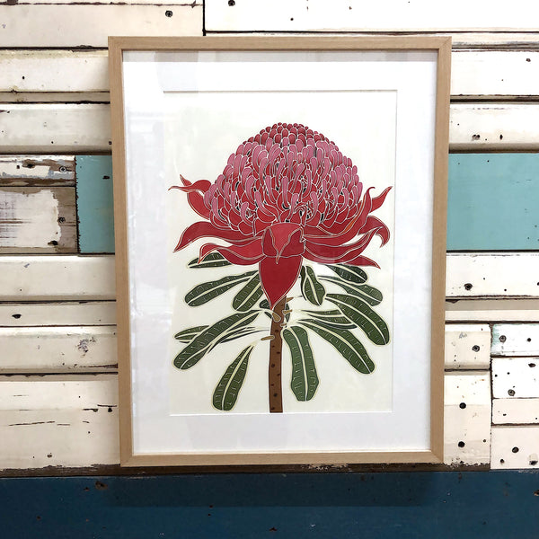 White Waratah - Framed Art Print