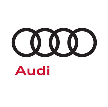 Audi Leather-Vinyl Dye Colors