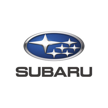Subaru Leather-Vinyl Dye Colors