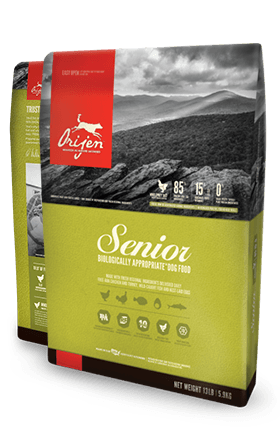 Orijen Senior Dog Food 12 oz