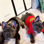 Gucci Black 4 XL  Dog Sweater