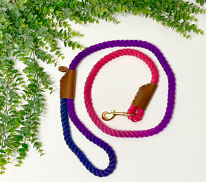 Ombre Dyed Leashes