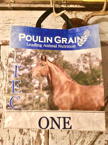Upcycled Horse Feed Shopping Bags - Poulin E TEC
