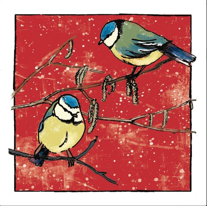 Festive Blue Tits - Amnesty International Ireland