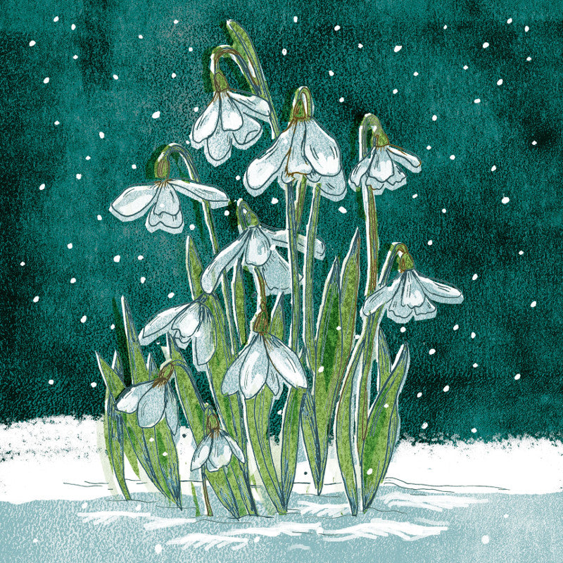 Amnesty Snowdrops Christmas Card - Amnesty International Ireland