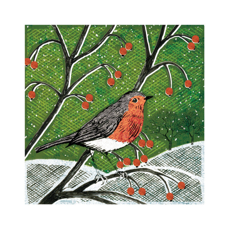 Amnesty Woodland Robin Christmas Card - Amnesty International Ireland
