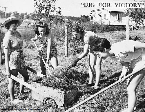 The image shows four women in shorts and tops loading cut grass or hay in to a wooden wheelbarrow.