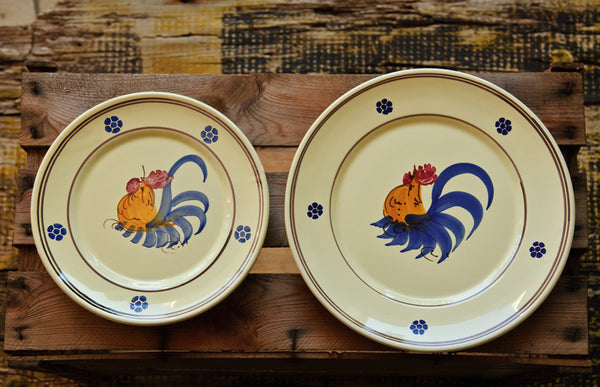 Hand-Painted Rustic Dinner Plates