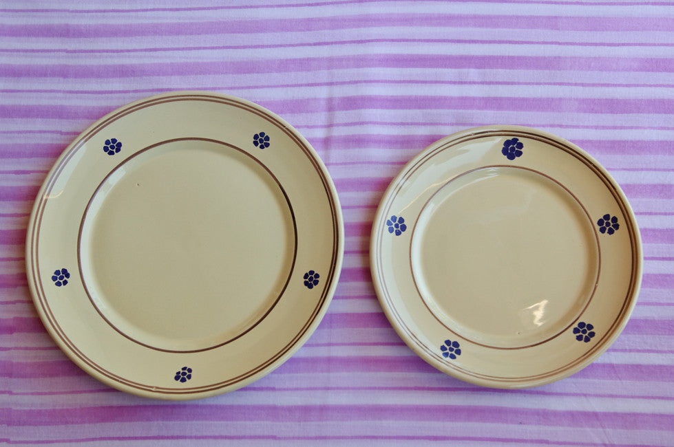 Hand-Painted Rustic-Chic Dinner Plates