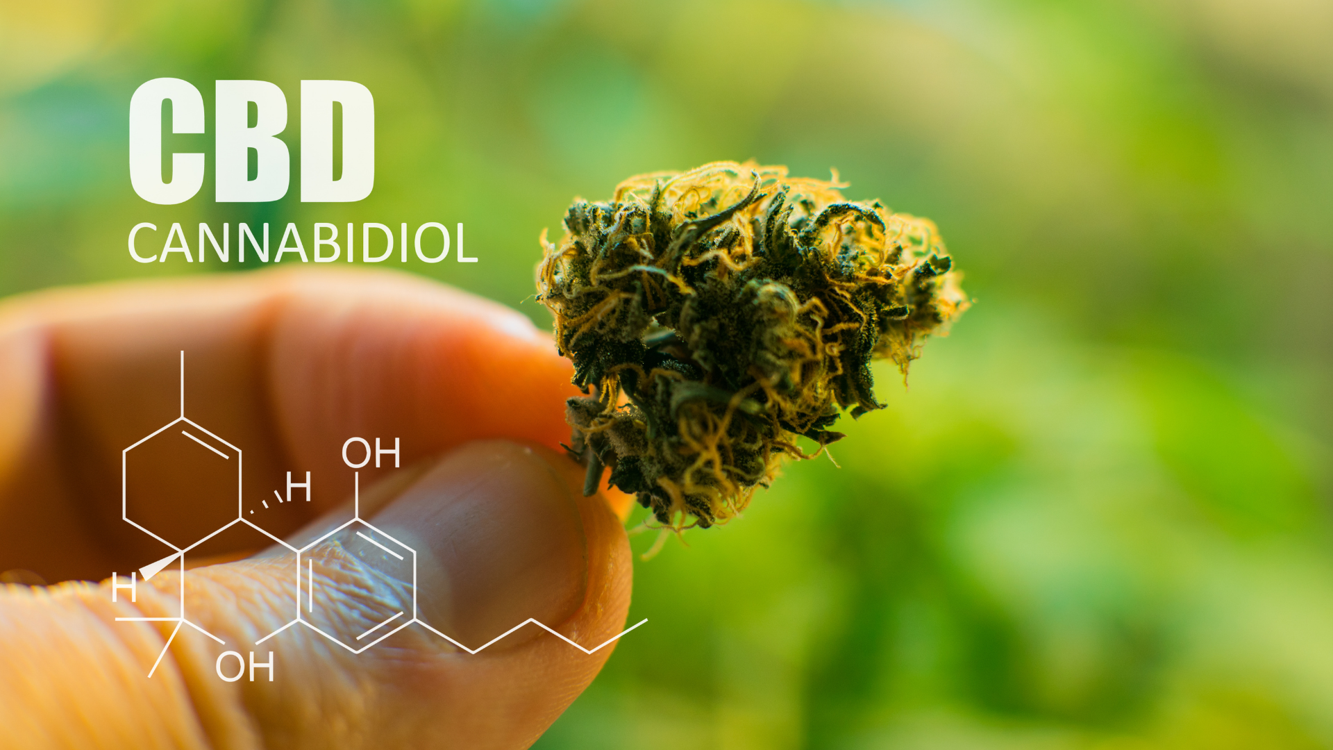 Top Reasons You Should Try CBD