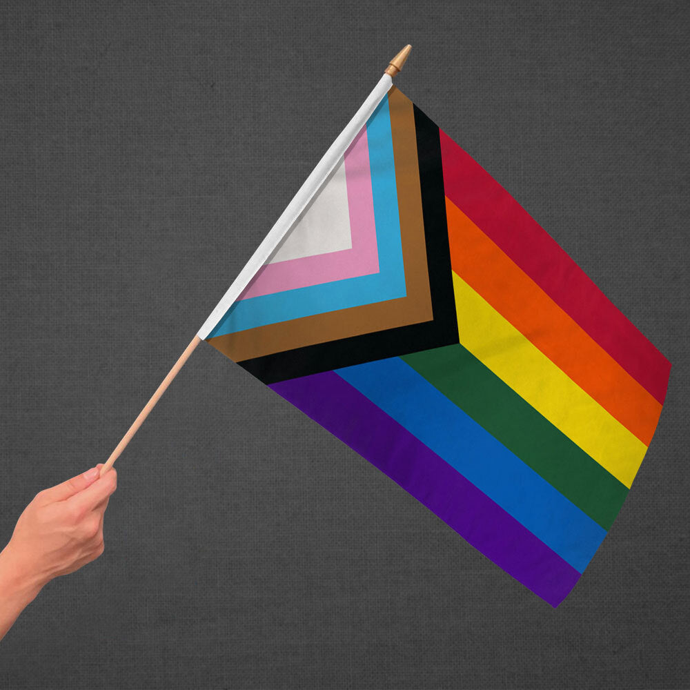 Inclusive Rainbow Stick Flag 12x18in