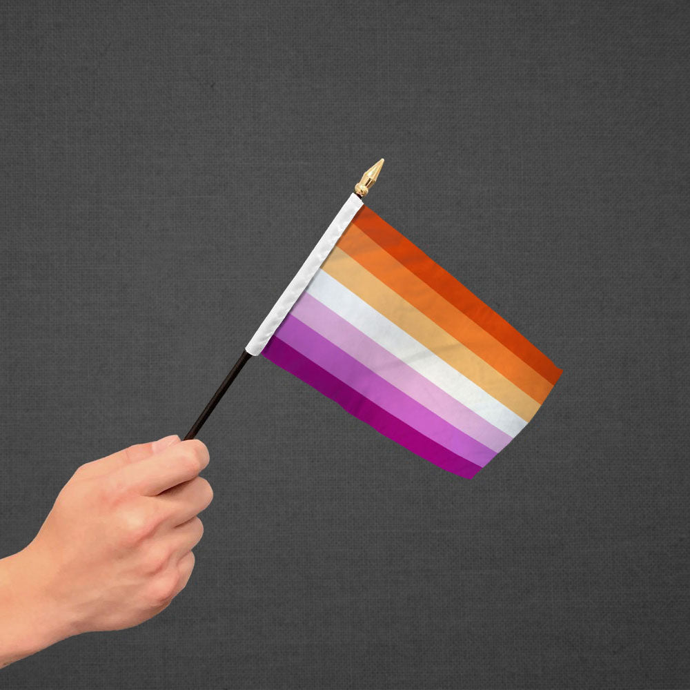 Lesbian Sunset Stick Flag 4x6in