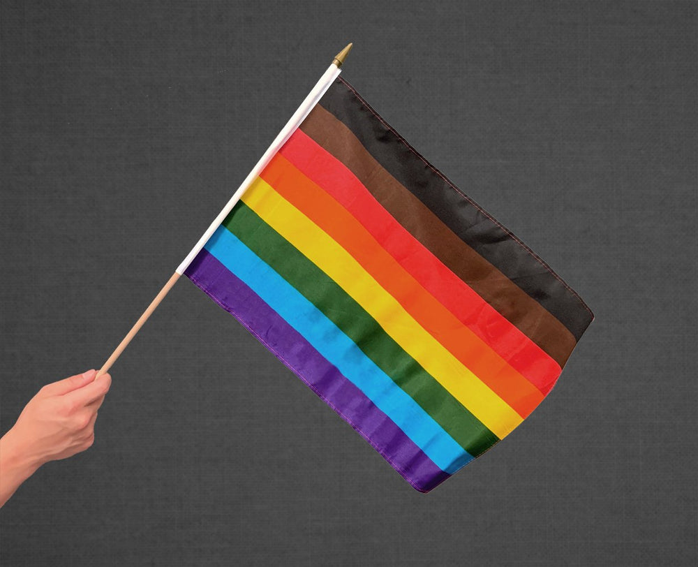 Philly Rainbow Stick Flag 12x18in