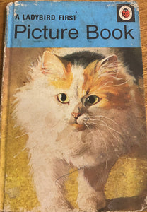 A Ladybird First Picture Book (25 June 1979 - 31 December 1980)