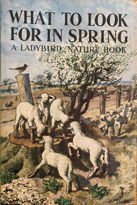 What to look for in Spring (1965 - February 1971)
