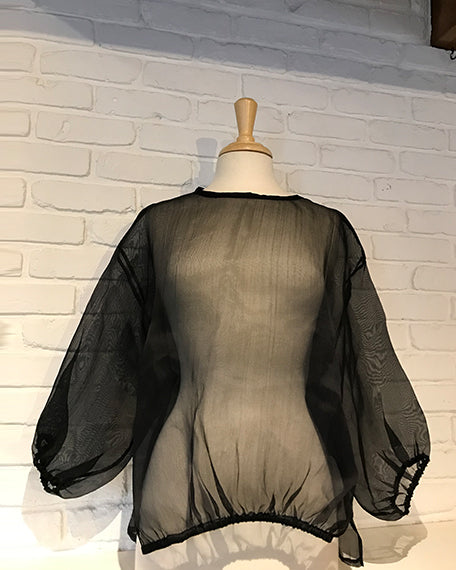 Organza Black Blouse