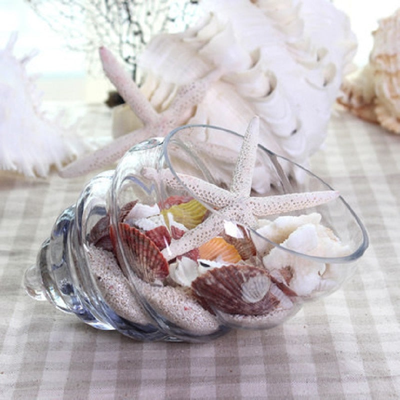 Crystal Conch Glass Vase