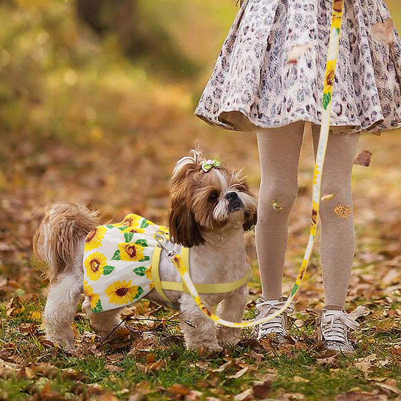 Puppy Floral Printed Dress