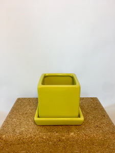 "3"" Cube & Saucer Chartreuse"