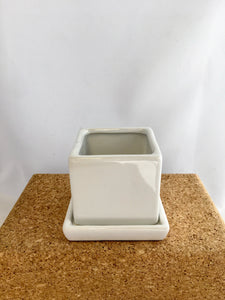 "3"" Cube & Saucer White"