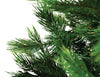 Calgary Pine Foliage Close-up