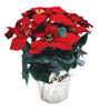 "14"" Silk Poinsettia Plant with 6"" Pot"