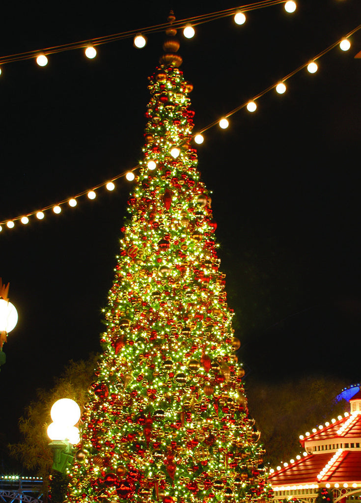 Giant Sequoia Tower Christmas Tree