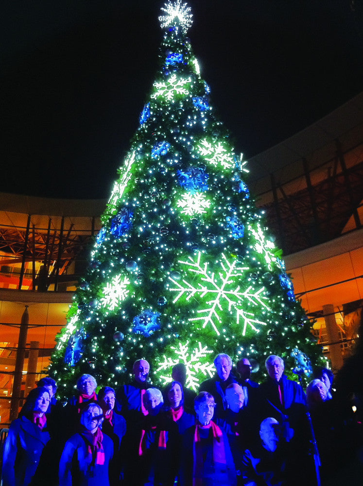 Rope Light Snowflake Led ropelight bubble snowflake commercial christmas supply led ropelight snowflake 50 sequoia tree with led snowflakes audiocablefo