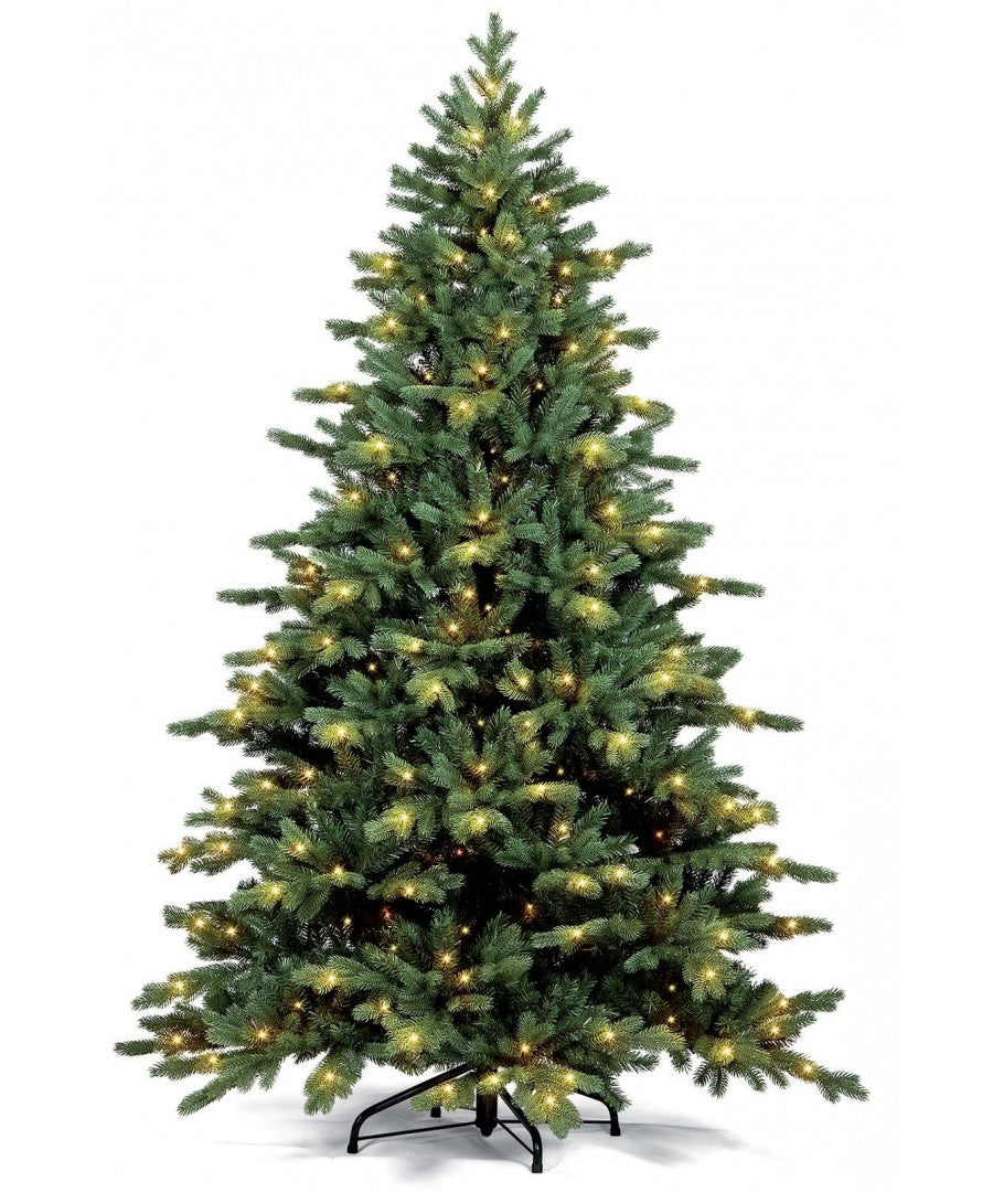 Commercial Fraser Fir Christmas Tree