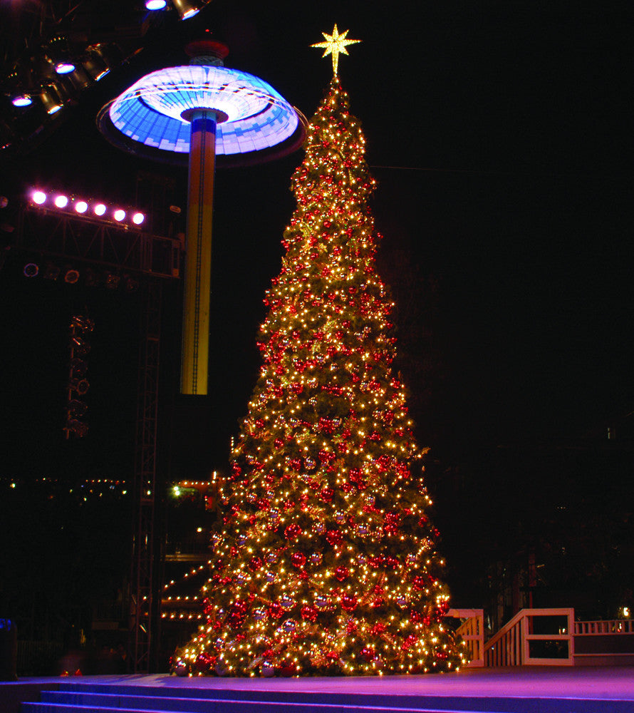 Gold Moravian Tree Topper on Giant Tower Tree