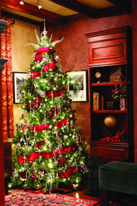 Beautifully Decorated Mountain Pine Christmas Tree